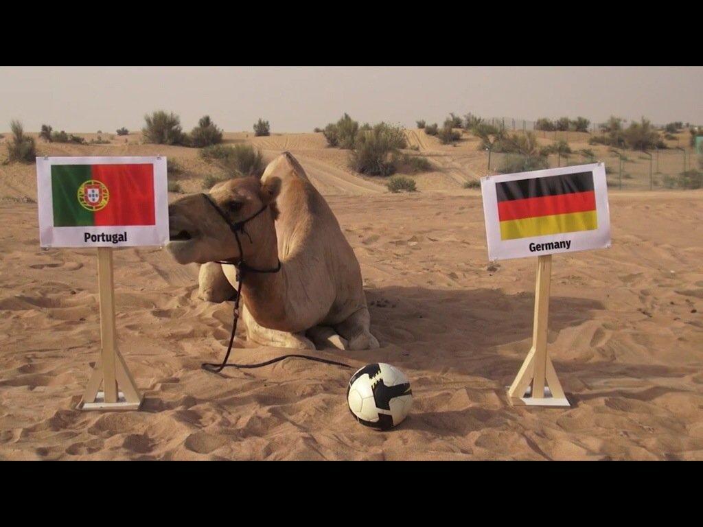 """""""Portugal Vs Alemanha, a superstição puxa para a Alemanha"""""""